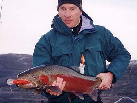 A Washington state (USA) steelhead caught on a Predatek B80M Boomerang fishin lure