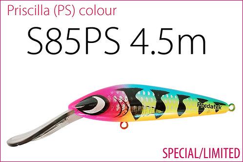 S85PS Priscilla colour