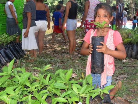 #FreshfromtheField: Appreciative Inquiry in Peru