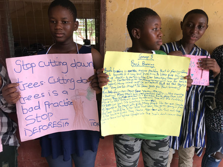 Using Theater to Promote Reforestation in Ghana