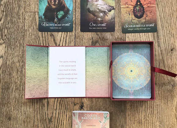 The Spirit Animal Oracle Deck by Colette Baron-Reid