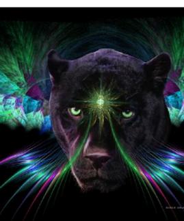 Handserenity-Shaman-Power-Animal-Blog.pn