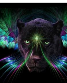 Handserenity-Shaman-Power-Animal-Blog.png