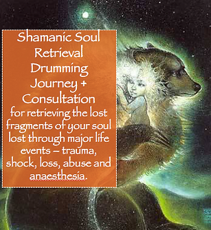 Soul Retrieval Consultation & Drumming Journey.