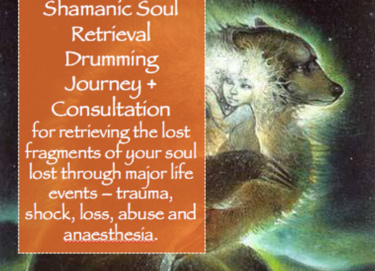 Soul Retrieval Consultation & Drumming Journey.