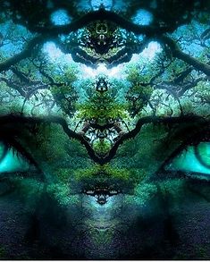 shamanic-healing.png