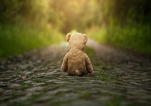 Bears for Schools_s.jpg