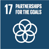 SDG 17-01.png