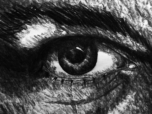 Kohlezeichnung Detail - Auge