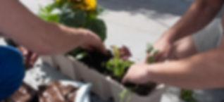 Home Farming Solutions - Öko-Balkonkasten aus Altpapier - Stadtgarten - Balkon- und Terrassengestaltung - Urban Gardenig