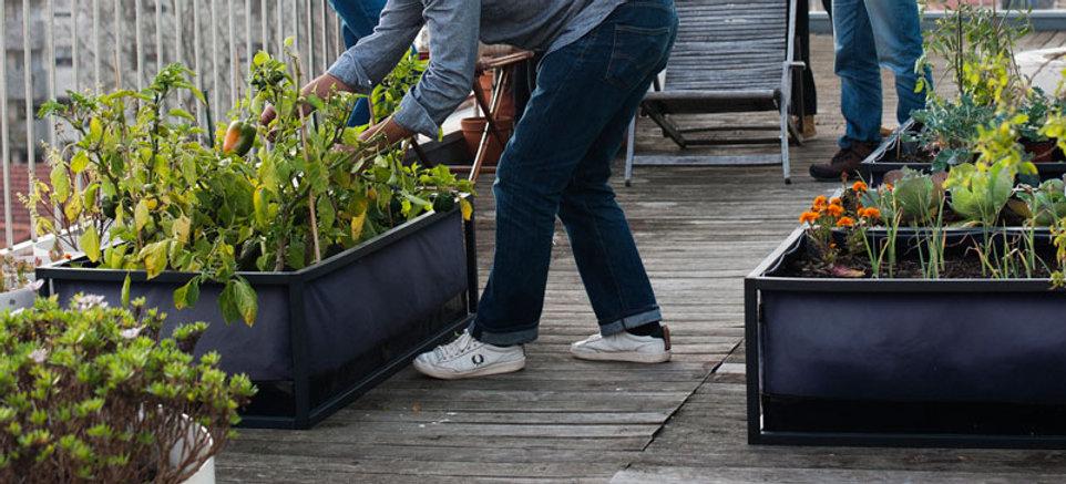 Dein Stadt-Garten - Noocity Growbed - Home Farming Solutions - Balkon- und Terrassengestaltung - Stadtgarten - Urban Gardening