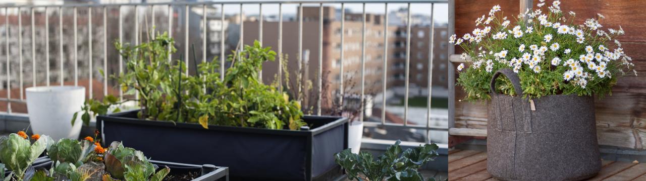 Home Farming Solutions - Balkon- und Terrassengestaltung mit Noocity Growbed, UGroBag, Gronest-Pflanztopf & Filz-Pflanzsack