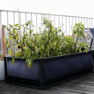 Pflanzkasten mit Wassertank