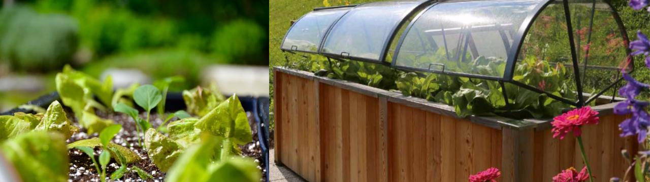 Home Farming Solutions - Gartengestaltung mit Hochbeeten von Timberra und Noocity Growbeds