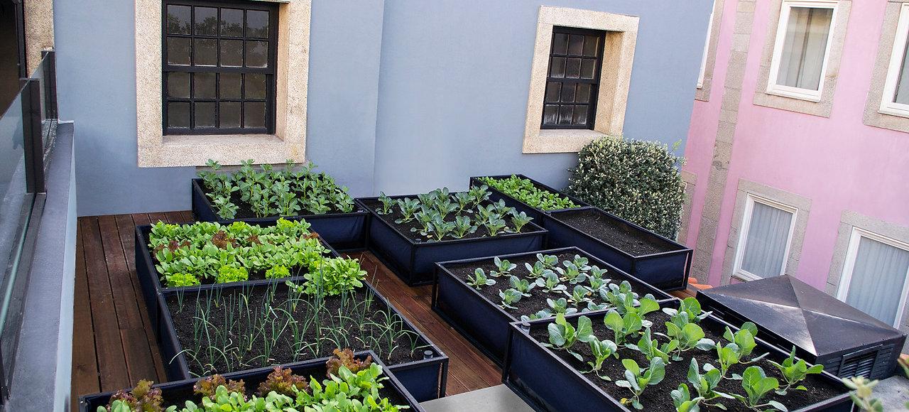 Pflanzkasten Noocity Growbed - mit Wasserreservoir - Home Farming Solutions - Balkon- und Terrassengestaltung - Stadtgarten - Urban Gardening