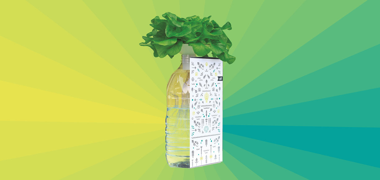 Indoor-Garten - BottleCrop - Salat aus der Flasche