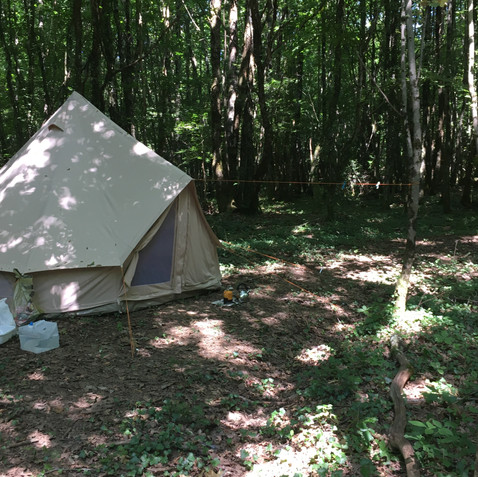 Bell tent in the woods