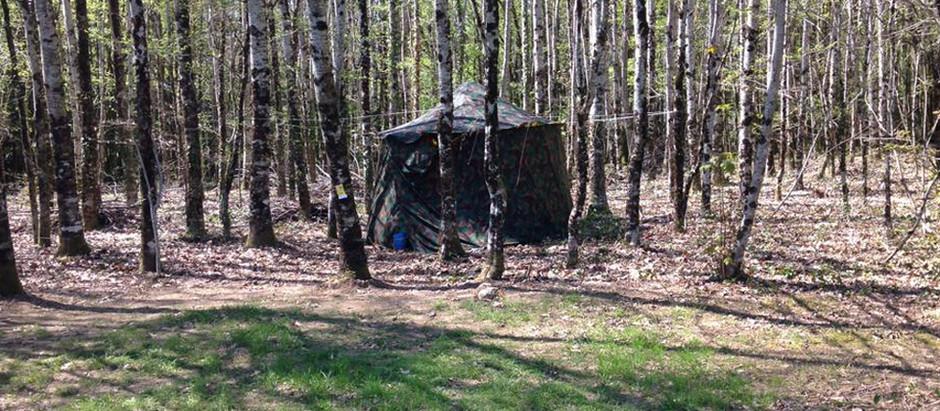 Camping en Printemps