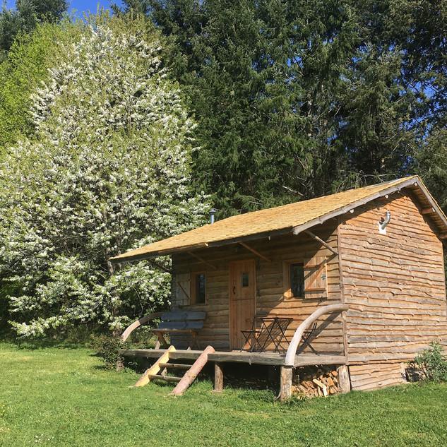 Cabane Cerise printemps.jpg