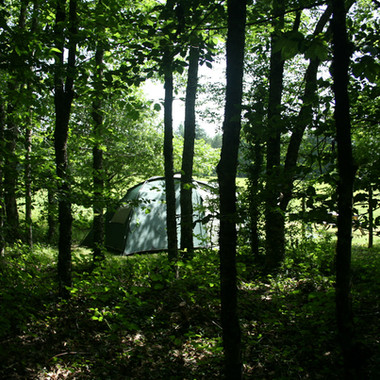 Camping Charme woodland.jpg