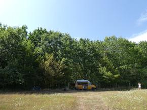 Billy VW campervan.jpeg