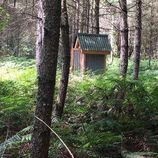Sapin Compost Tin Toilet.jpg