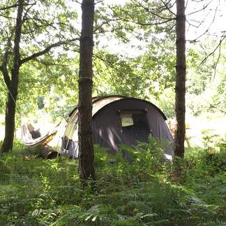 Tent and hammock.jpg