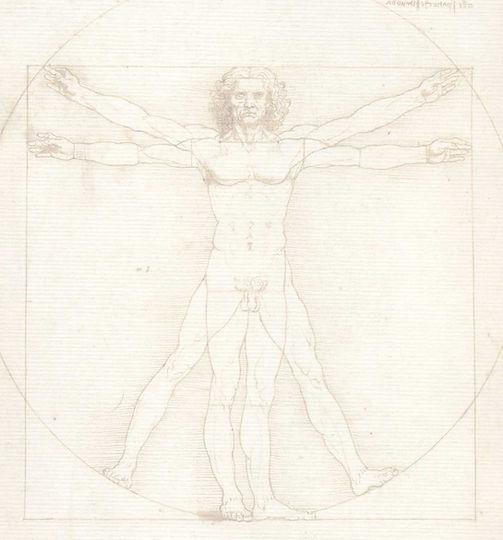 Leonardo Uomo Vitruviano.jpg