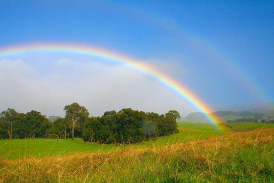 THE RAINBOW–EARTH'S SIGN OF HEAVEN'S TRUTH