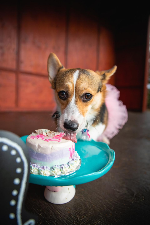 Nalu's Birthday-3513.jpg