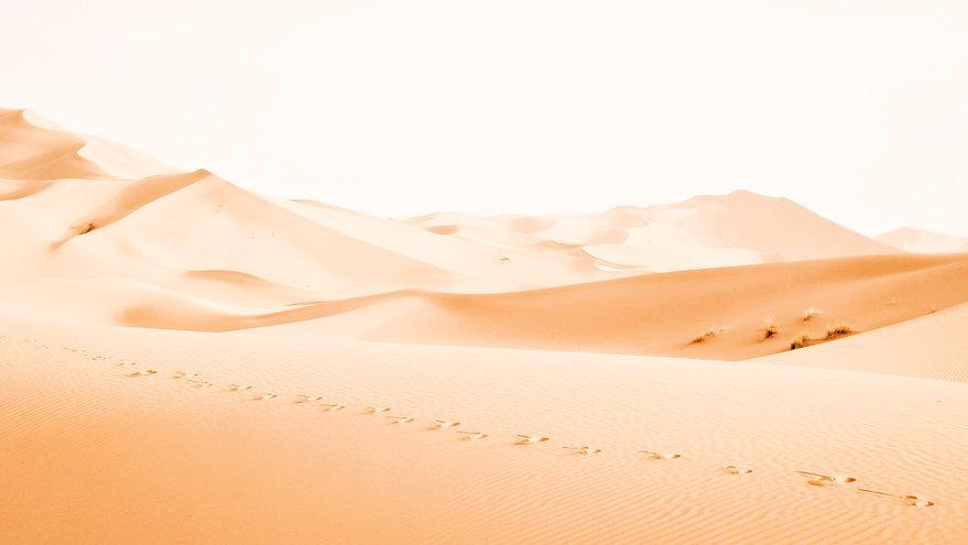 Desert%20Dunes_edited.jpg