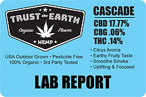 cascade_hemp_lab_report_trust_the_earth_