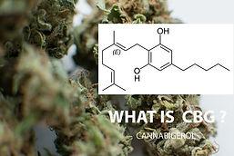 Smoking_CBG_benefits_trust_the_earth_hem