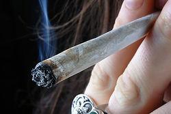 Smoking_Hemp_trust_the_earth_hemp.jpg