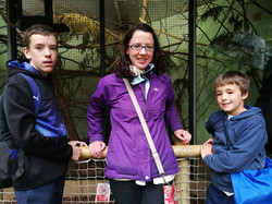 Trip to the zoo 1