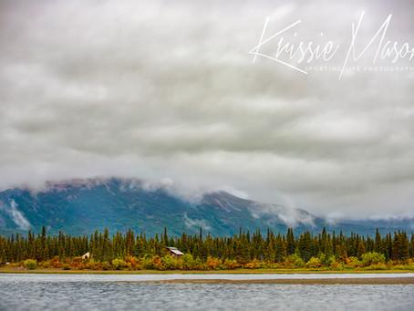 RIDE UP THE ALLEN RIVER IN ALASKA