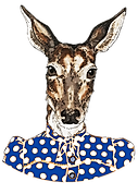 Blue White Doe Logo.png