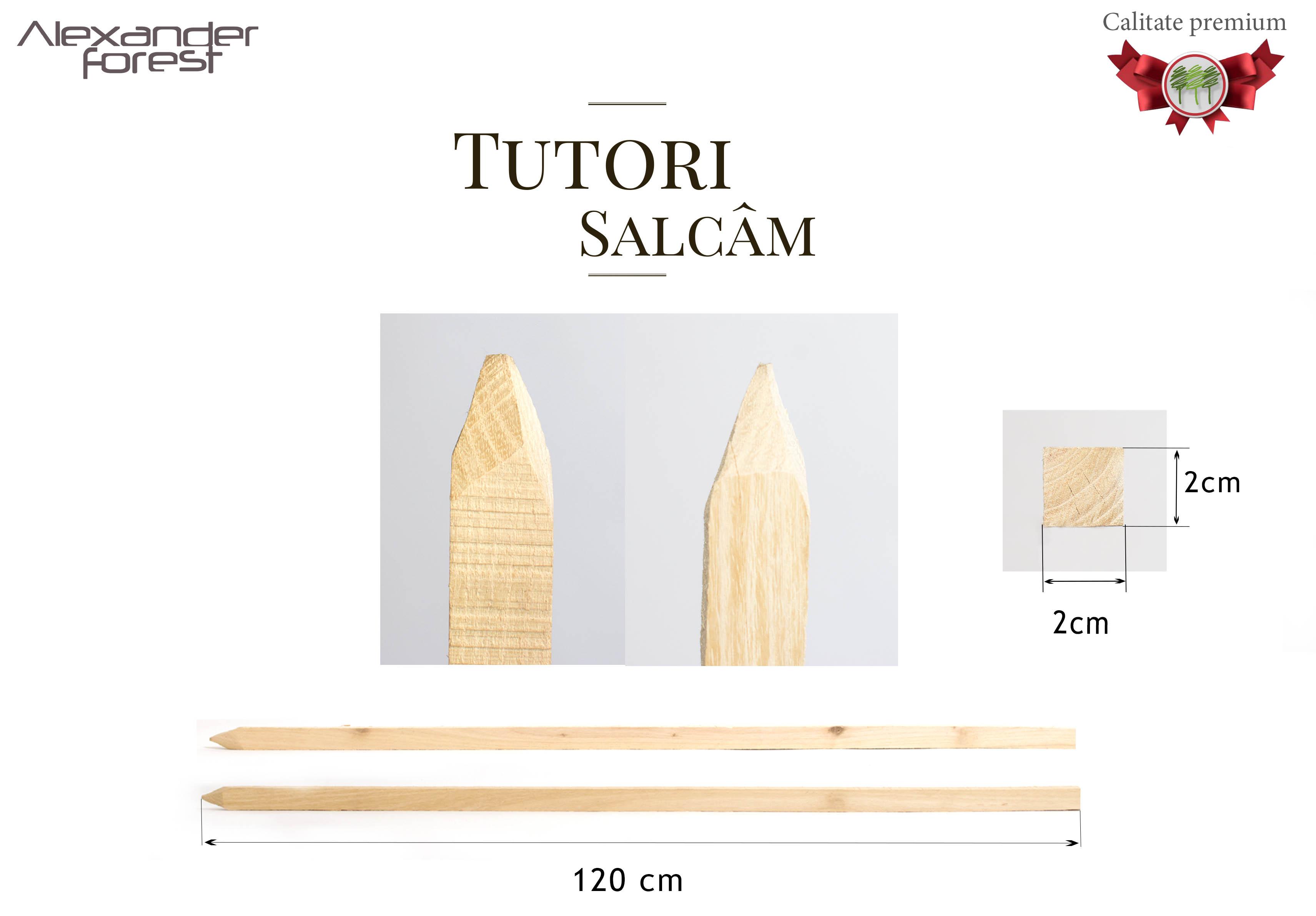 Tutori_salcam