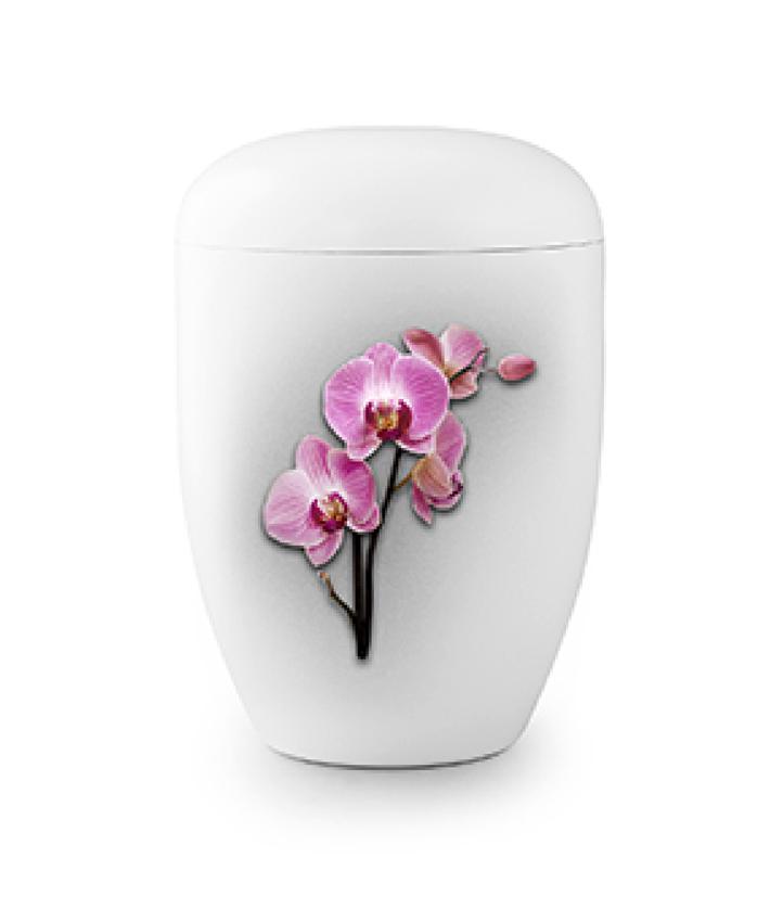 Enkel med orkide
