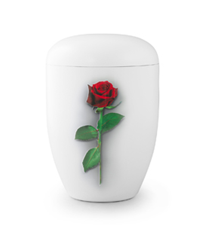 Enkel med rose
