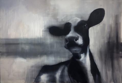 Helen O'Sullivan-Tyrell, Urban Cow, acreyl op vanvas, 70 x 100