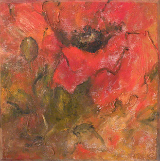 Angèle Hoovelts, Rode papaver, olieverf op zandstructuur op doek, 50x50
