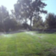 Irrigation.jpg