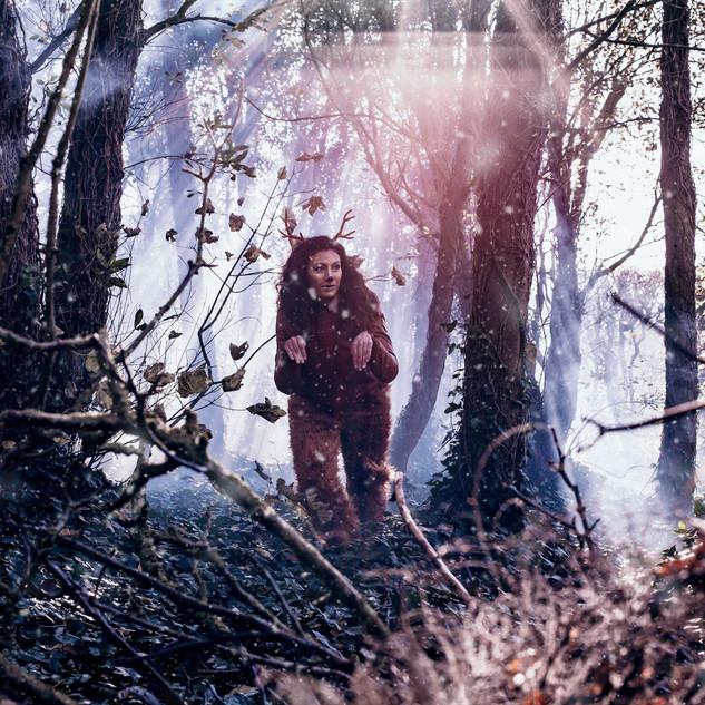 woodlandshoot.1.jpg