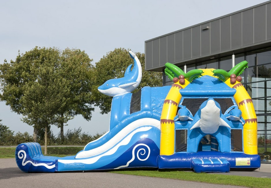 Dolphin Multiplay Bouncer With Slide