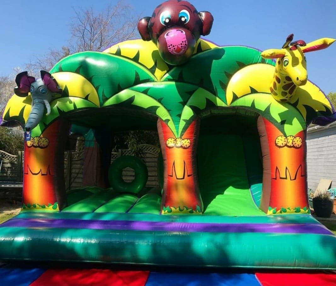 Jungle Kingdom Play and Slide