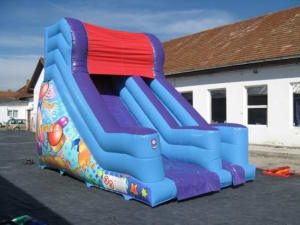 Party Time 10ft Slide