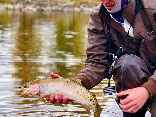 January Fishing on the Bitterroot River