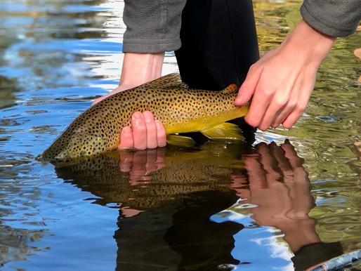 3/16/2021 Fishing Report