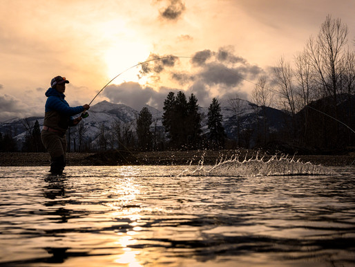 1/29/2021 Fishing Report